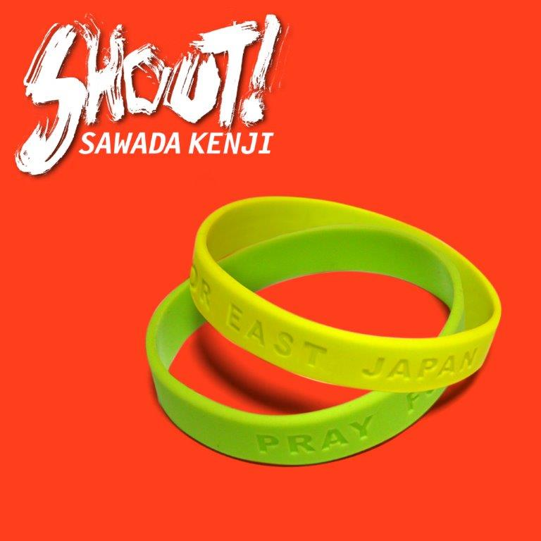沢田研二LIVE 2019 「SHOUT!」