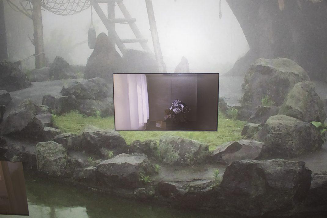 """chelfitsch & Teppei Kaneuji """"Eraser Fields"""" at ROHM Theatre Kyoto"""