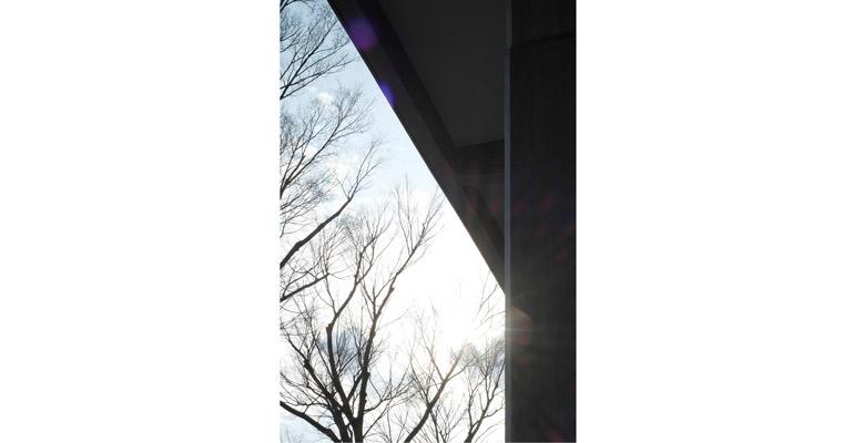 飯沼珠実 写真展「歌う建築を聴く- architecture singing」